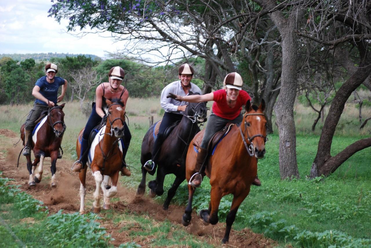 Horseback Africa - Home